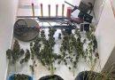 Συνελήφθησαν δύο άτομα για ναρκωτικά