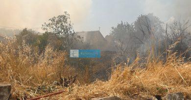 Φωτιά έχει ξεσπάσει στη Μηλια της Μάνης